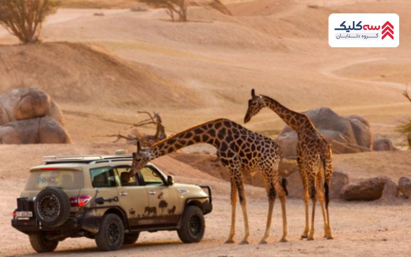 باغ وحش بزرگ العین بزرگترین باغ وحش که جزء بهترین جاذبه گردشگری العین به شمار میرود.