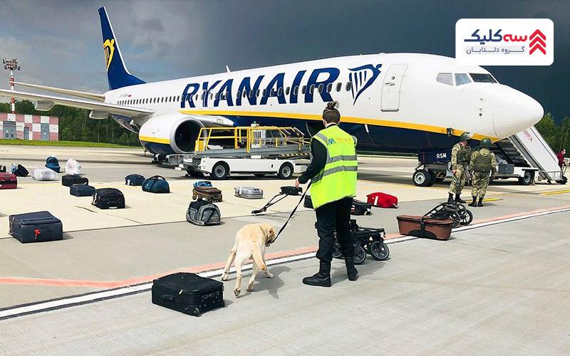 سگ های آموزش دیده